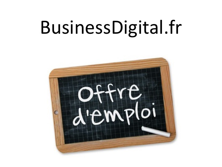 Offre d'emploi COO Chief Operating Officer